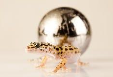 Monde dans le gecko images stock