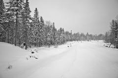 monde de neige Photographie stock