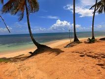 Monde de plage Images stock