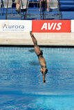 monde de plate-forme de fina de plongée du championnat 10m Photographie stock