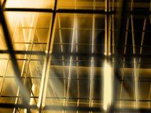 Monde mystique de cage Image libre de droits