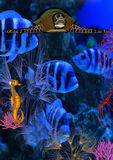 monde sous-marin Photo stock