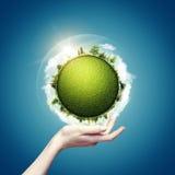 Monde vert dans des nos mains Image libre de droits