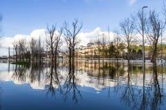 Mondego-Fluss Stockbild
