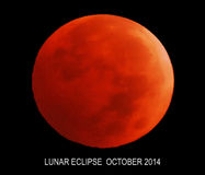 Mondfinsternis im Oktober 2014 Lizenzfreies Stockfoto
