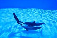 mondial показатель freediving2 Стоковые Изображения