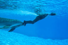 Mondial Record In Freediving-Simone Arrigoni Royalty Free Stock Photography