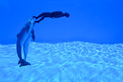 Mondial Record In Freediving4 Royalty Free Stock Images