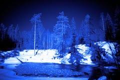 Mondnacht im Winterwald   Lizenzfreie Stockfotos