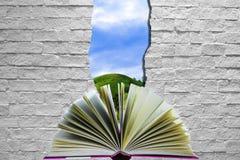 Mondo aperto del libro Fotografia Stock Libera da Diritti