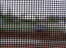 Mondo attraverso la rete di zanzara no.1 Fotografia Stock Libera da Diritti