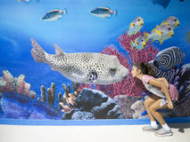 Mondo Bangkok dell'oceano Fotografie Stock Libere da Diritti