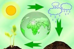 Mondo crescente della pianta del suolo della nuvola del sole di concetto del ciclo della pianta Immagini Stock Libere da Diritti