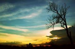 Mondo dei sogni Fotografia Stock