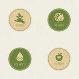 Mondo di Eco Immagini Stock
