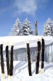 Mondo di ghiaccio e di neve Fotografia Stock