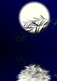 Mondscheinnacht Stock Abbildung