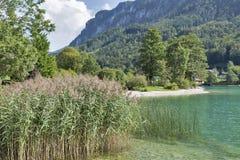 Mondsee Lake shore in Austrian Alps Stock Photo