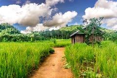 Mondulkiri, Камбоджа Стоковое Фото
