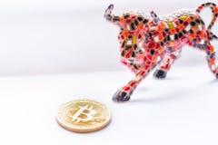Moneda de Bull y del pedazo imagen de archivo libre de regalías