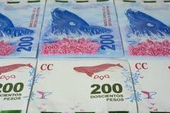 Moneda de la Argentina foto de archivo
