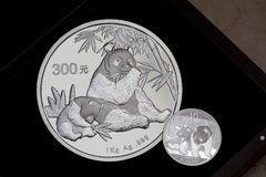 Moneda de la panda de China Fotos de archivo