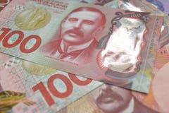 Moneda de NZ Imagen de archivo libre de regalías