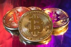 Moneda de oro física del bitcoin de Cryptocurrency en fondo colorido Imágenes de archivo libres de regalías