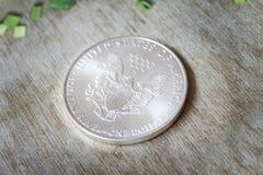 Moneda de plata de American Eagle Imagenes de archivo