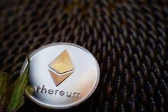 Moneda de plata lustrosa de Ethereum en la cabeza madura del girasol Imagen de archivo