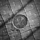 Moneda de plata de Monero Fotos de archivo libres de regalías