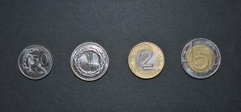 Moneda del pln del dinero del pulimento de la moneda del Zloty Fotografía de archivo libre de regalías