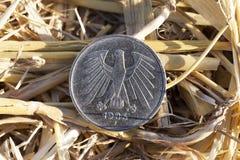 Moneda en la paja Foto de archivo libre de regalías