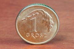 Moneda polaca 1 grosz fotos de archivo