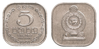 Moneda srilanquesa de 5 centavos de la rupia Imágenes de archivo libres de regalías
