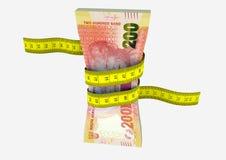 moneda surafricana 3D con los pares de tijeras Imagen de archivo