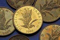 Monedas de Croacia Imágenes de archivo libres de regalías