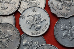 Monedas de Hong Kong imagen de archivo libre de regalías