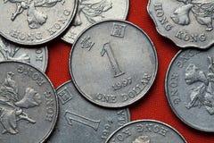 Monedas de Hong Kong fotos de archivo libres de regalías
