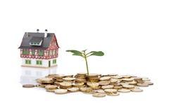 Monedas de la planta verde y poca casa Foto de archivo