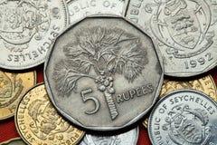 Monedas de las Seychelles Palma de coco (nucifera de los Cocos) imagen de archivo