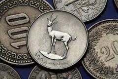 Monedas de los United Arab Emirates Fotografía de archivo