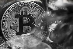 Monedas de oro de bitcoins en medio de los regalos del ` s del Año Nuevo, blancos y negros Fotos de archivo libres de regalías