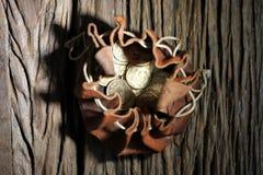 Monedas de oro de Vreneli foto de archivo
