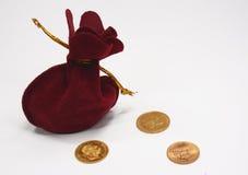 Monedas del saco y de oro Imagen de archivo libre de regalías