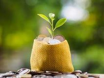 Monedas en bolso de la materia textil en fondo de la falta de definición ahorro del dinero financiero fotos de archivo libres de regalías