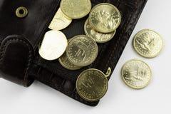 Monedas en carpeta imagen de archivo libre de regalías