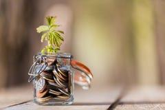 Monedas en jarro Imagen de archivo libre de regalías