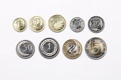 Monedas polacas en un fondo blanco
