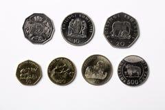 Monedas tanzanas en un fondo blanco